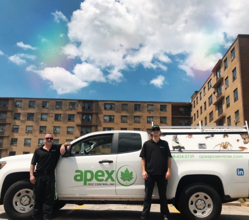 Apex Pest Control Team