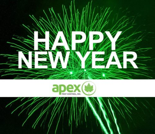 Happy new year 2020 from Apex Pest Control